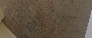 Stain Removal from your carpets