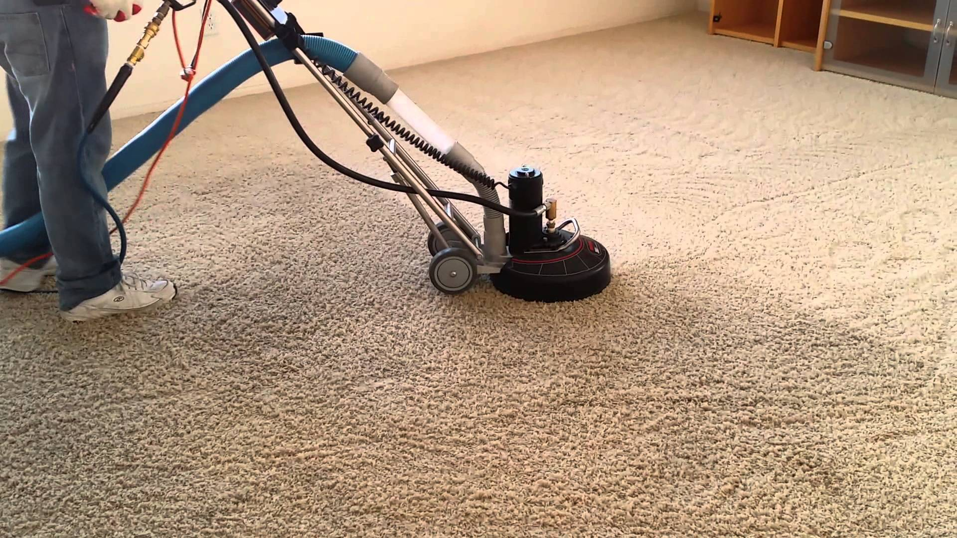 Image result for Why to Choose Carpet Cleaning Services