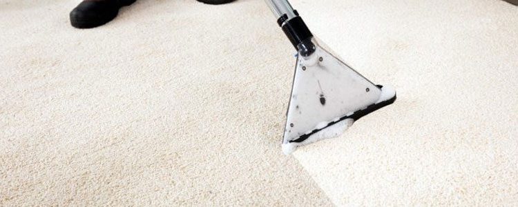 Carpet Cleaning Mount Prospect