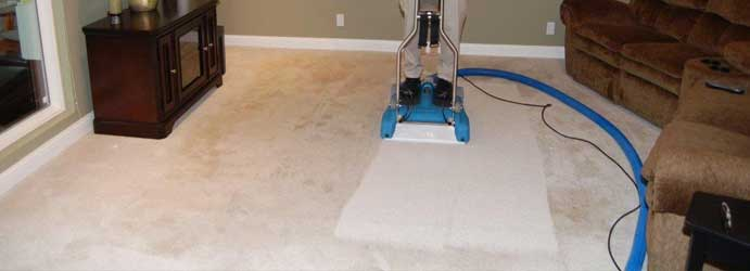 Carpet Drying Undera
