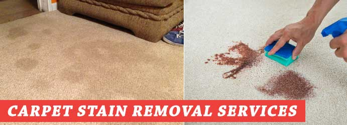 Carpet Stain Removal Services Warburton