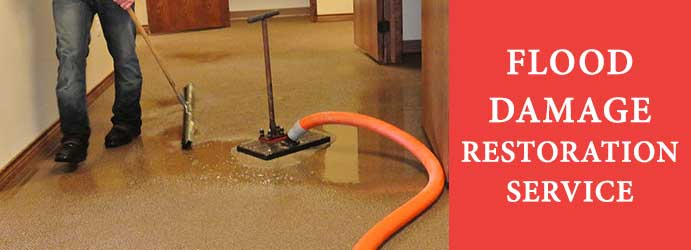 Flood Damage Restoration Sulky