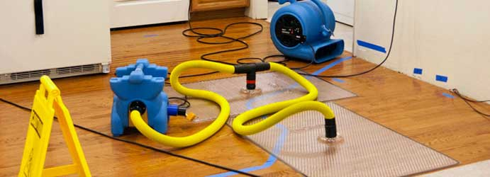 Water Damage Restoration Dingee