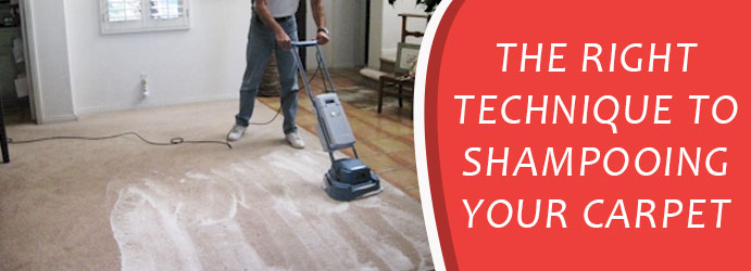 Shampoo Carpet Cleaning Melbourne