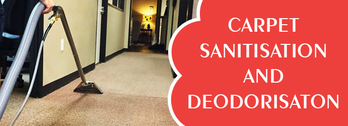 Carpet Sanitisation and Deodorisation Palerang