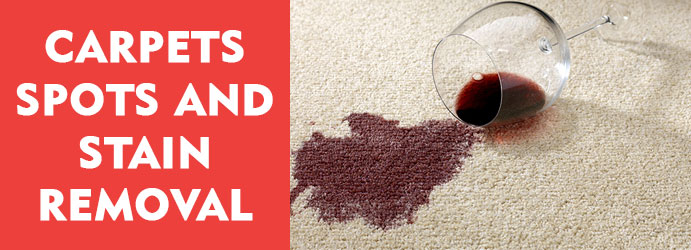 Carpet Spots and Stain Removal Services Spring Hill