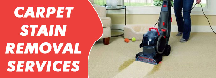 Carpet Stain Removal Services Sunshine Coast
