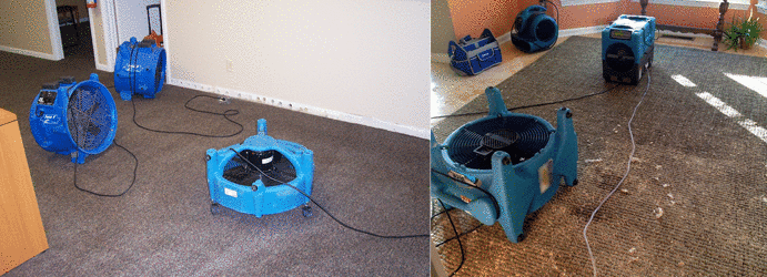 Flood Damage Carpet Restoration Teal Flat
