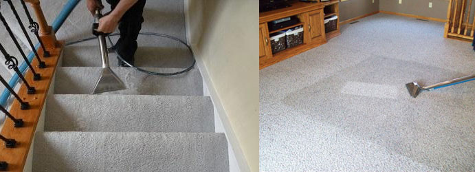 Carpet Sanitising Warburton