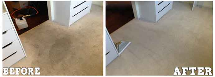 Carpet Cleaning in East Perth