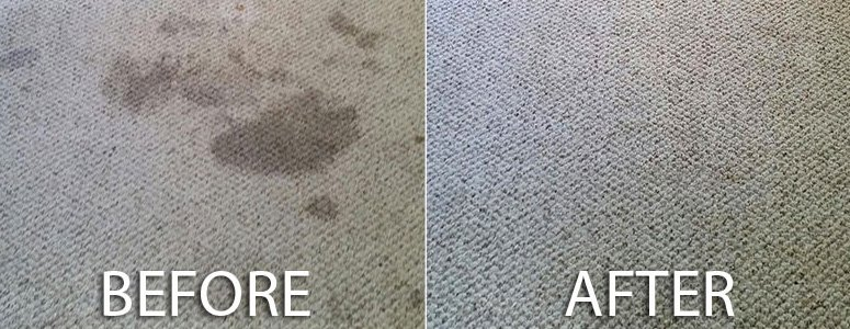 Before and After Carpet Stain Removal
