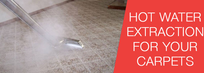 Hot Water Extraction For Your Carpets?