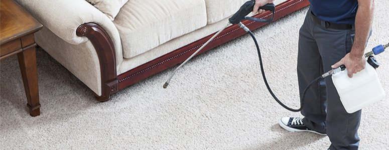 Scotchgard Carpet Fabric Cleaning Toorak