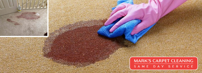Blood Stain Removal from Carpet