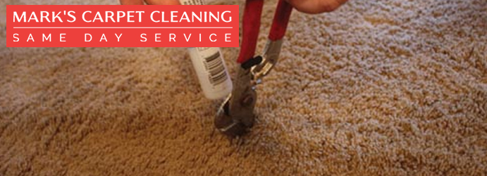 Carpet Damages Repair