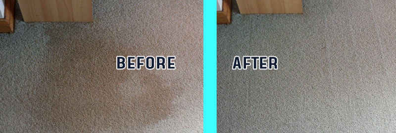 Before After Carpet Cleaning Cranbourne