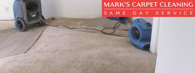 Carpet Flood Damage Restoration Brighton