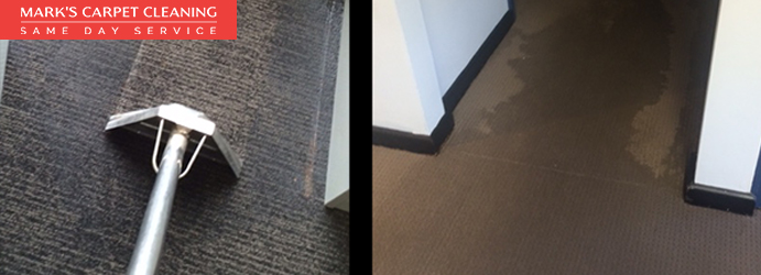 Carpet Flood Water Damage Beerburrum