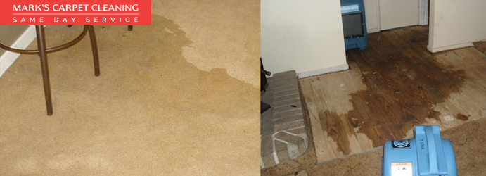 Carpet Flood Water Damage Restoration Woongoolba