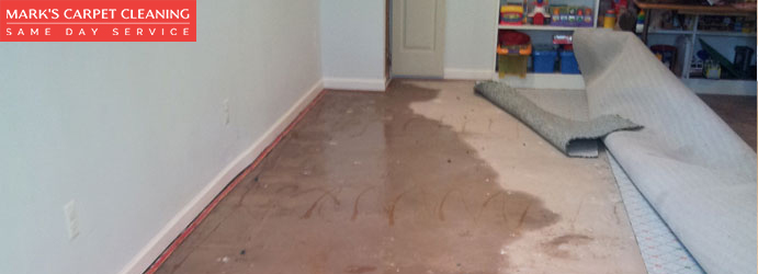 Carpet Flood Water Damage Restoration Leura