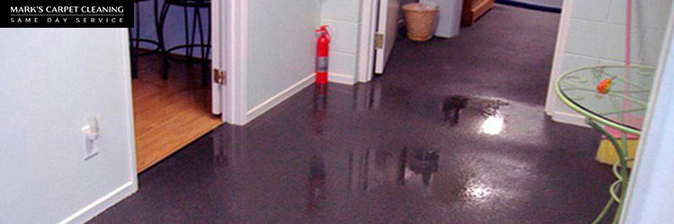 Carpet Water Damage Restoration Florey