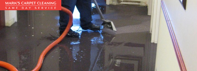 Emergency Water Damaged Carpet Restoration Cleveland