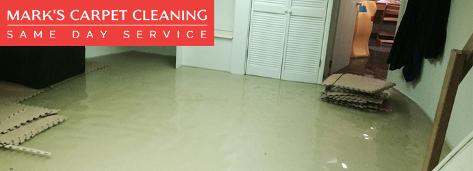 Flood Damage Restoration North Lambton