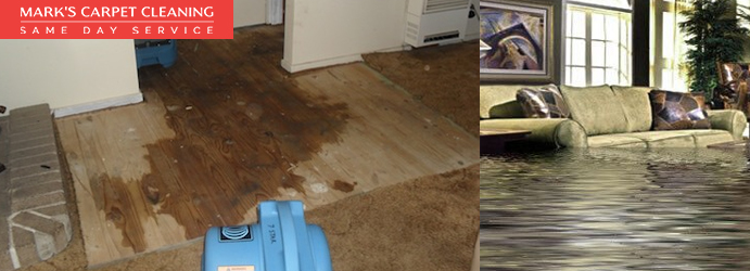 Professional Carpet Flood Damage Restoration Services Woongoolba