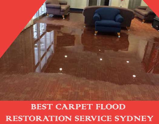 Best Carpet Flood Restoration Services