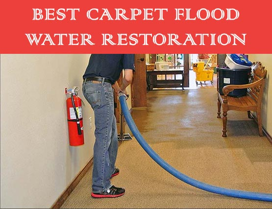 Best Carpet Flood Water Restoration Calamvale