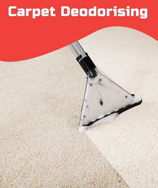 Carpet Deodorising New Town