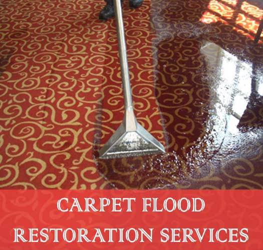 Carpet Flood Restoration Services Mount Whitestone