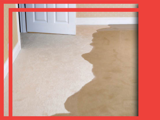 Carpet Flood Water Damage Russell