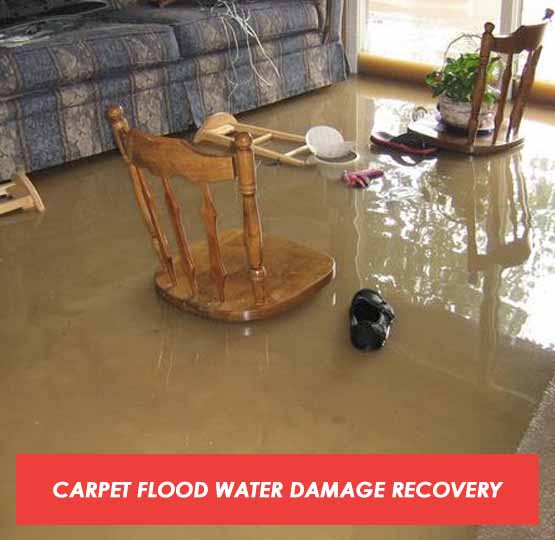 Carpet Flood Water Damage Recovery Melaleuca
