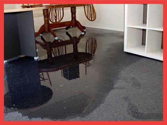Carpet Flood Water Damage Restoration Teal Flat
