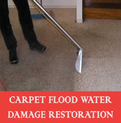 Carpet Flood Water Damage Restoration Collins Creek