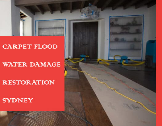 Carpet Flood Water Damage Restoration Parramatta Westfield