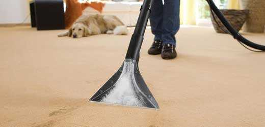 Carpet Sanitising Silver Sands