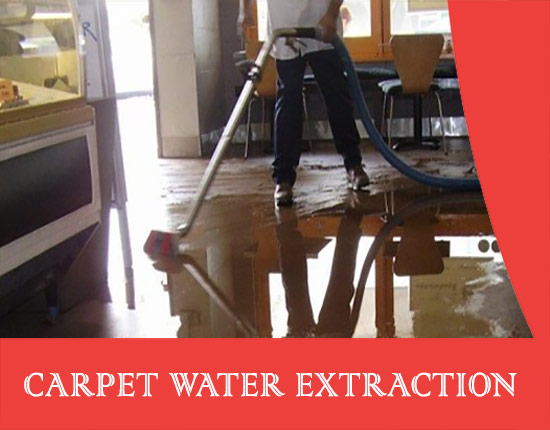 Carpet Water Extraction Whiteside