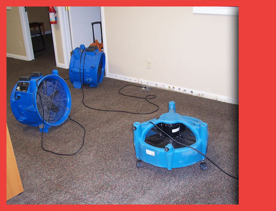 Carpet Water Restoration Harman