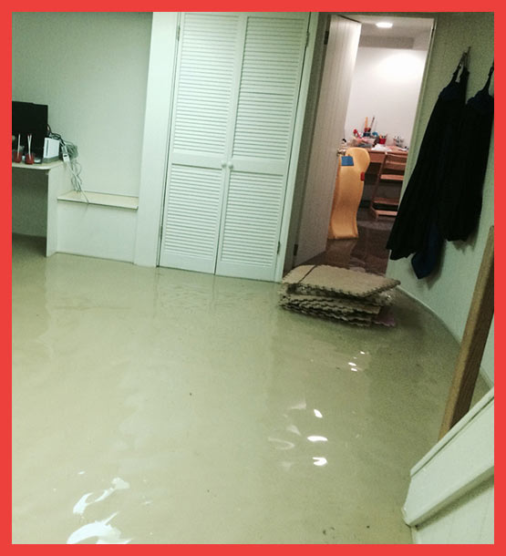 Flood Damage Restoration Moncrieff