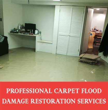 Professional Carpet Flood Damage Restoration Services Findon Creek