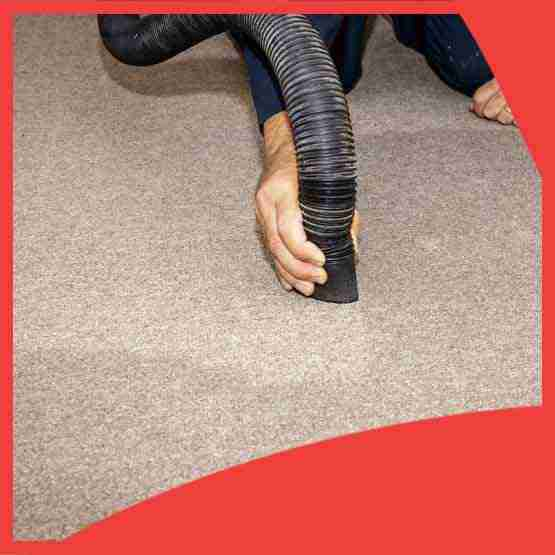 Professional Carpet Water Restoration Keswick