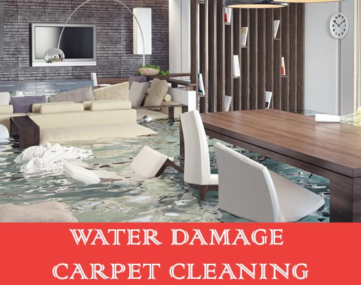 Water Damage Carpet Cleaning Benair