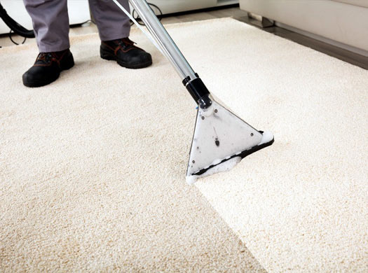 Best Carpet Cleaning Forrest