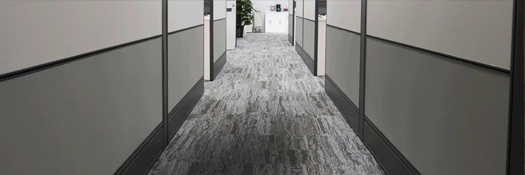 Commercial Carpet Cleaning Back Valley