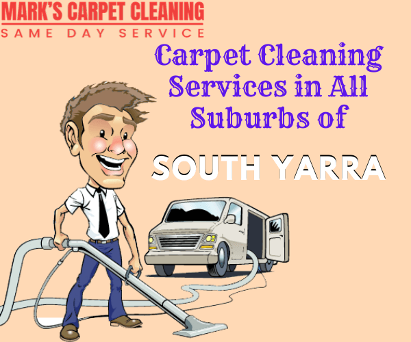 Cleaning Services in All Suburbs of south yarra