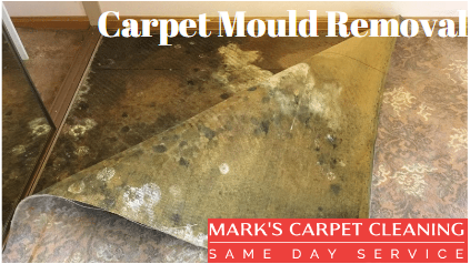 Carpet Cleaning Roleystone