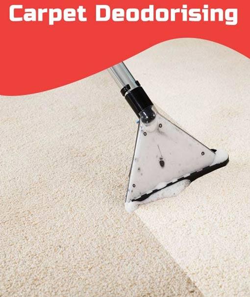 Carpet Deodorising Launceston