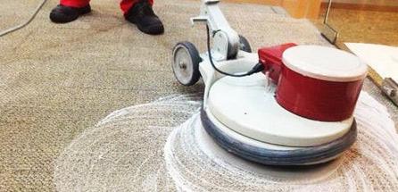 Carpet Shampooing Launceston